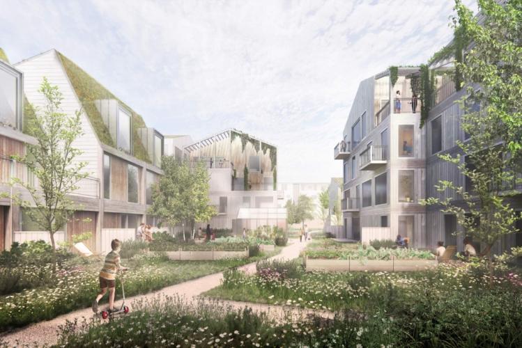 Ny bydel med 125 træboliger i Roskilde
