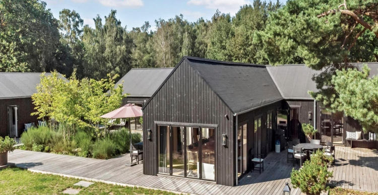 Ung ejendomsprofil sætter sommerhus til salg for 28,5 millioner