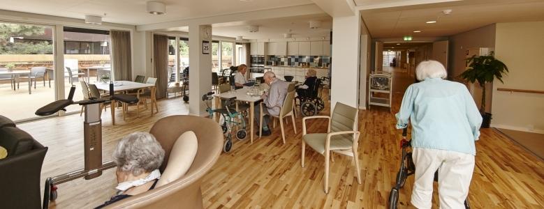 Jylland: Senior- og ældreboliger - udvikling og byggeri
